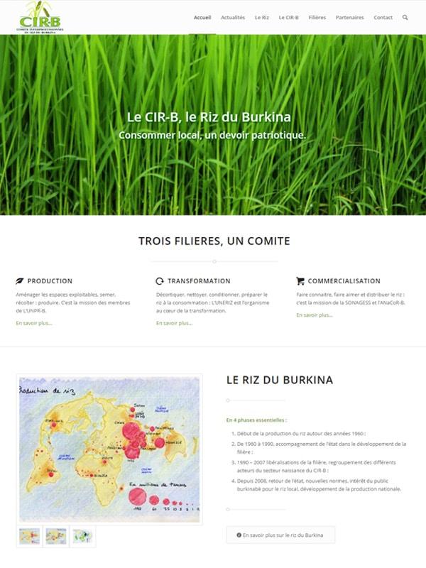 Aperçu du la page d'accueil du site officiel du CIR-B
